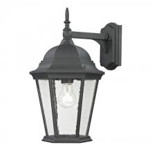 Elk Cornerstone 8101EW/65 - Temple Hill Coach Lantern In Matte Textured Blac